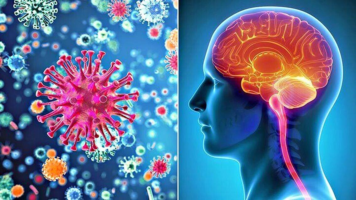 Photo of Meningite, quando un'infezione colpisce il cervello in modo pericoloso