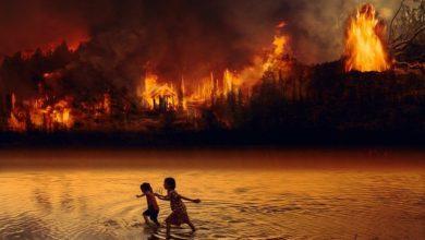 Photo of Incendi: problema per la salute da non sottovalutare